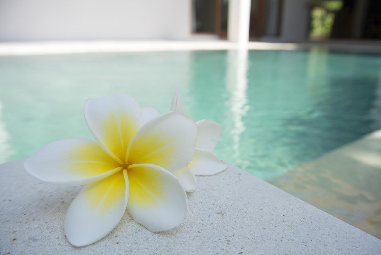 Choisir le robot de piscine idéal